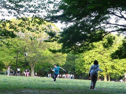 s-野点@代々木公園